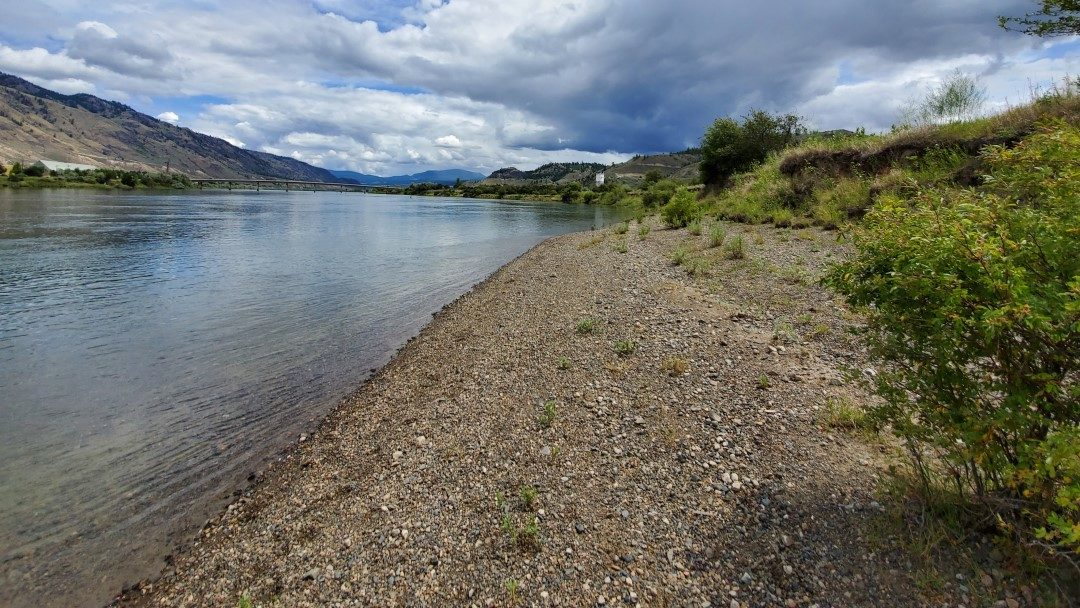 On a Small Gravel Beach on the South Thompson River Facing East - Campbell Creek Nature Park Off-Leash Dog Park - Kamloops - BC (2)