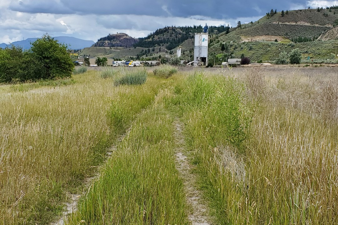 Campbell Creek Nature Park, Off-Leash Dog Park, Kamloops, BC