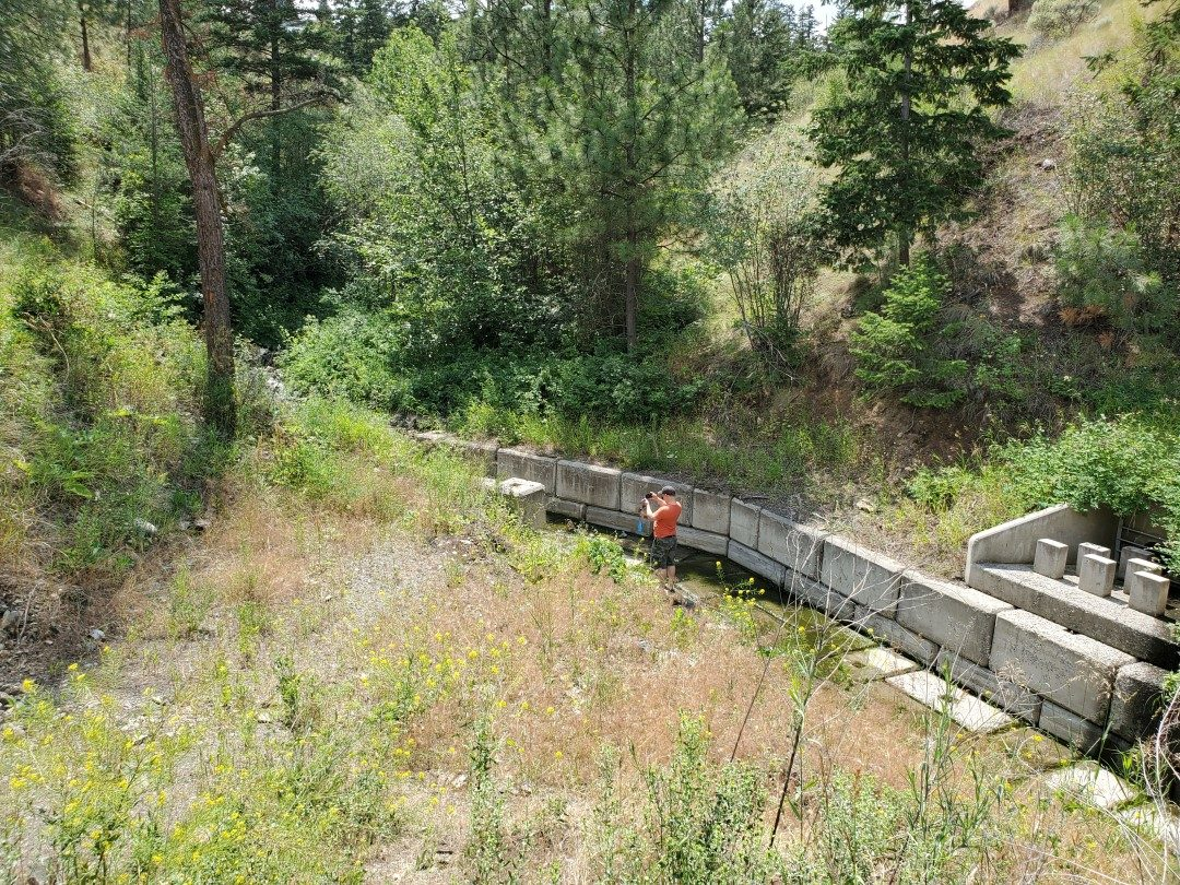 Storm Drain on the South Side of Chino Place - Gleneagles Off-Leash Dog Park - Kamloops - BC (2)
