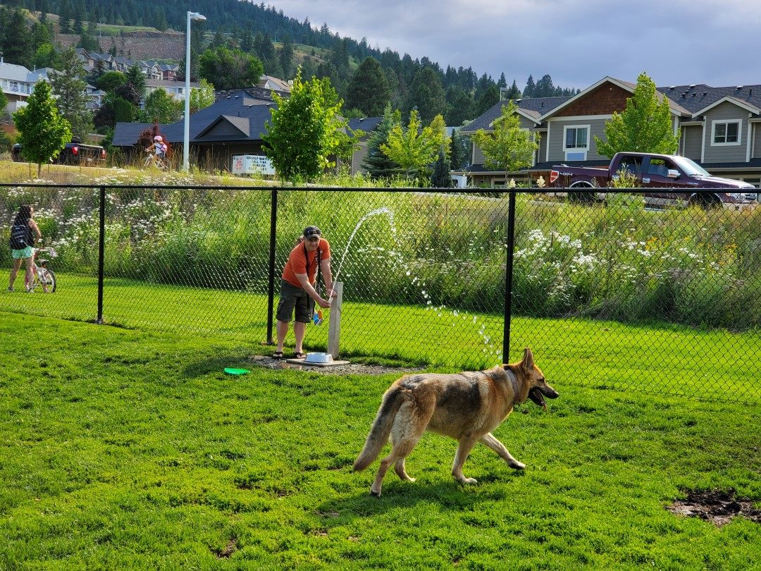 Juniper Off-Leash Dog Park - Kamloops - BC (2)