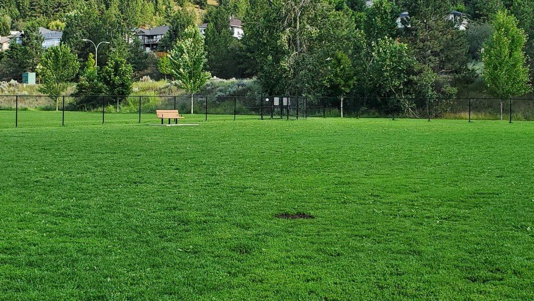 Juniper Off-Leash Dog Park - Kamloops - BC (3)