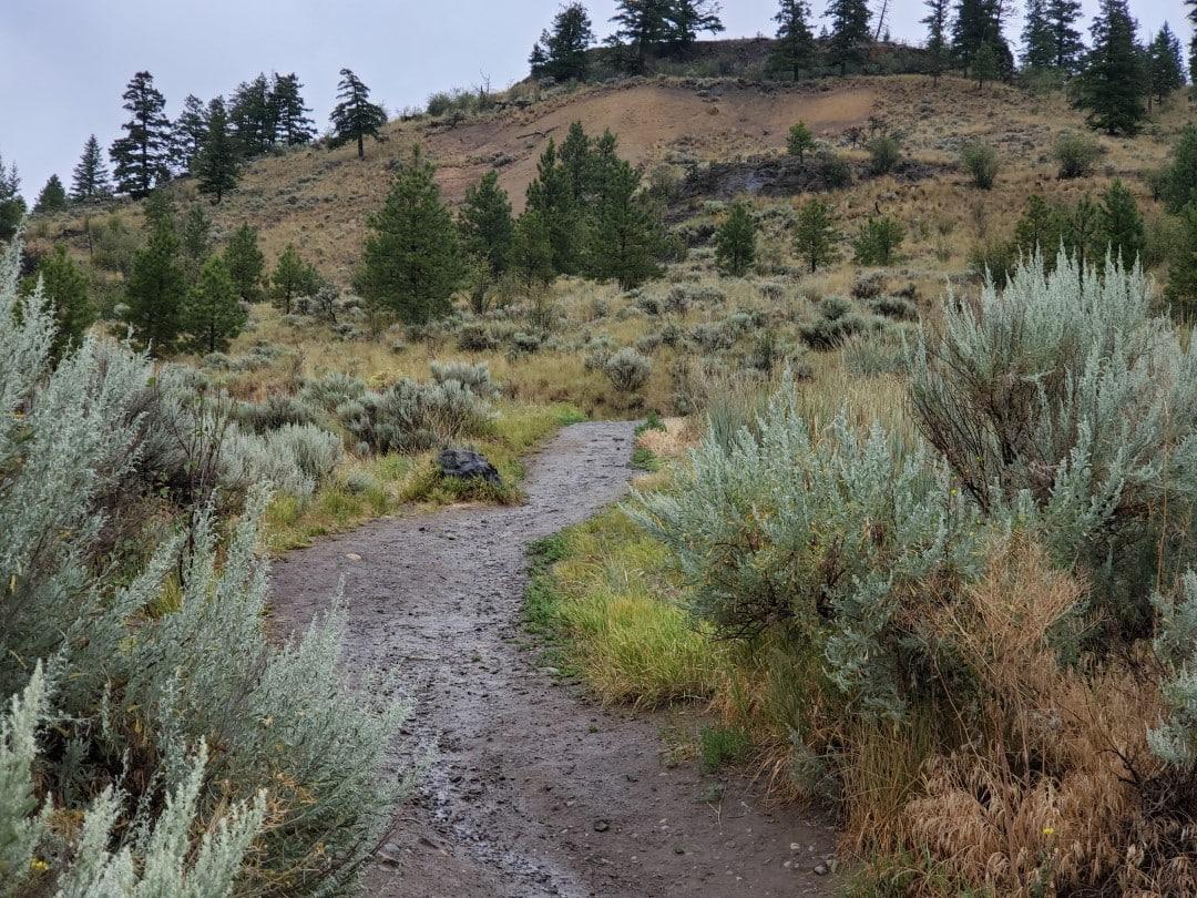 Kenna Cartwright Nature Park Off-Leash Dog Park – Hillside Drive Trailhead – Kamloops -BC (6)