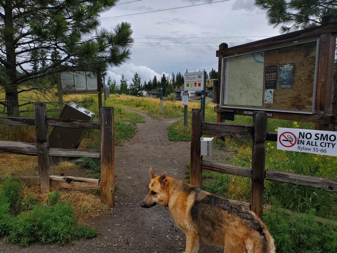 Kenna Cartwright Nature Park Off-Leash Dog Park – Pacific Way Trailhead – Kamloops – BC (1)