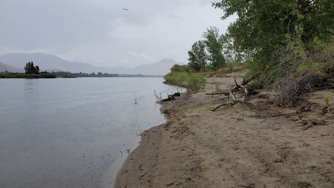 Mission Flats Nature Park Off-Leash Dog Park – Kamloops – BC (8)