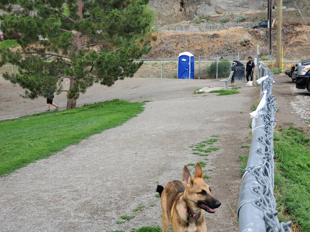 Ord Road Off-Leash Dog Park – Kamloops – BC (3)
