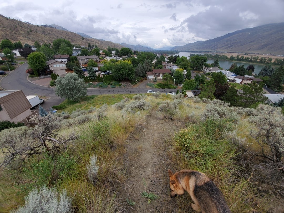 Perryville Off-Leash Dog Park – Kamloops – BC (1)