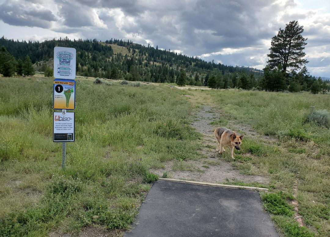 Rose Hill Off-Leash Dog Park, Kamloops, BC (4)