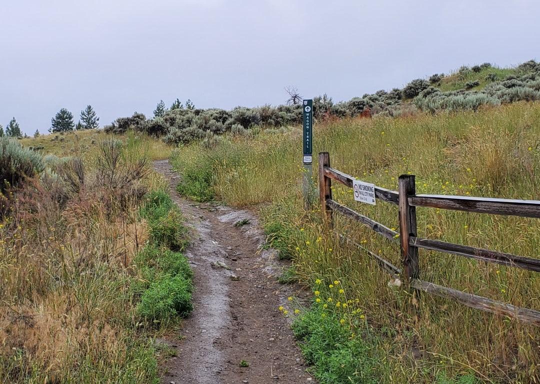 Sahali Terrace Nature Park, Off-Leash Dog Park, Kamloops, BC