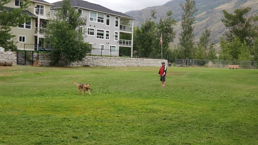 Westsyde Centennial Off-Leash Dog Park Kamloops BC (2)