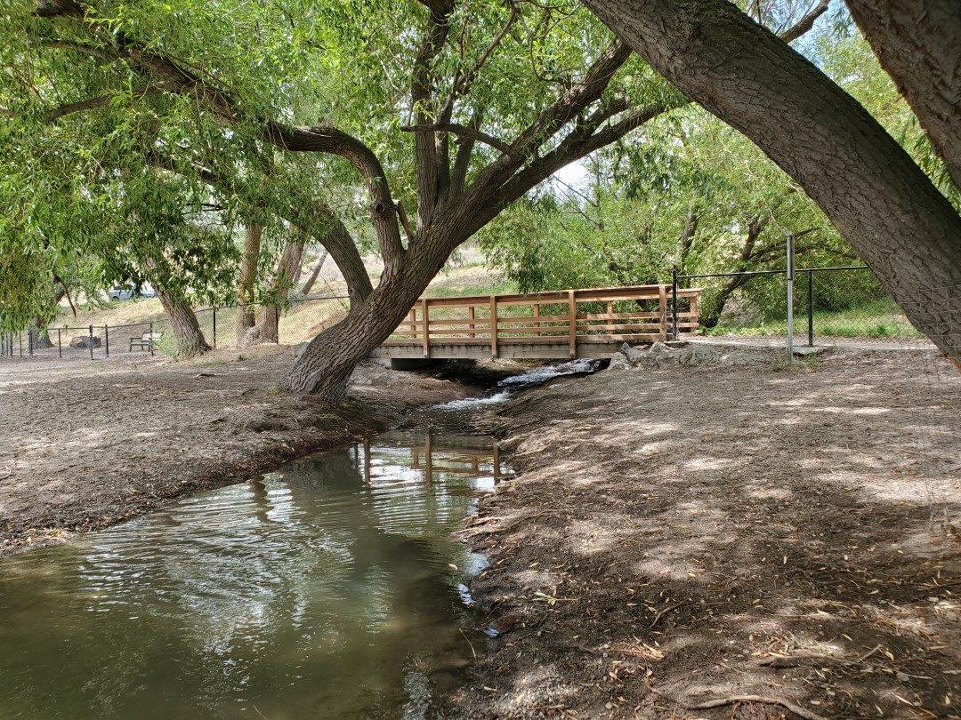 Gellatly Off-Leash Dog Park (Beach), West Kelowna (Westbank), BC (4)