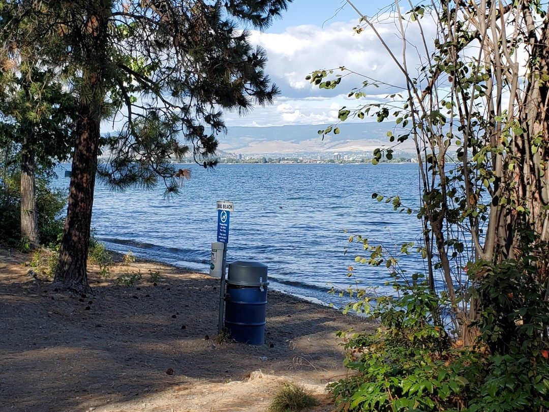 Kalamoir Beach Regional Off-Leash Dog Park - West Kelowna - BC (4)