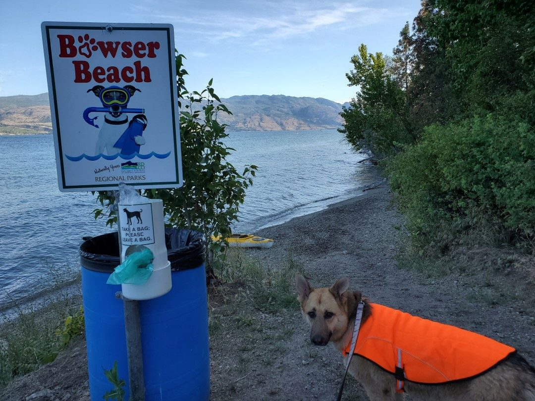 Kalamoir Beach Regional Off-Leash Dog Park, West Kelowna, BC