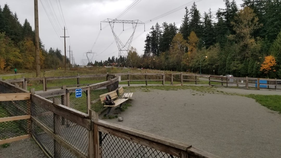 Mundy Park Off-Leash Dog Park – Coquitlam – BC (6)