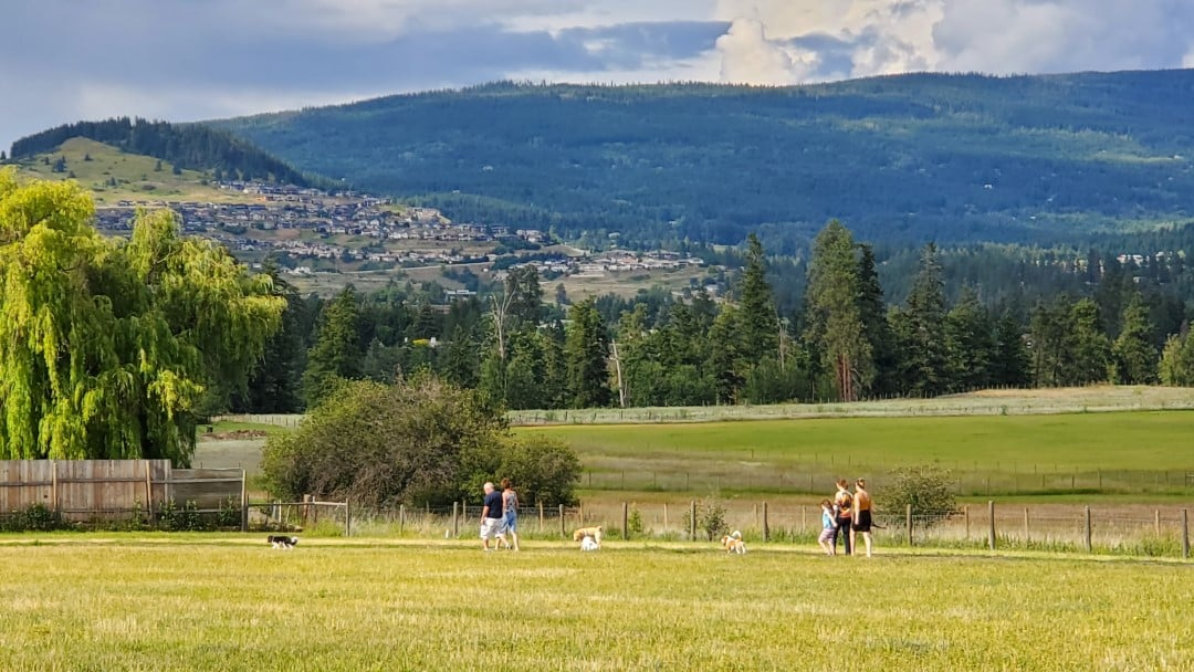 Mutrie Road Off-Leash Dog Park, Vernon, BC