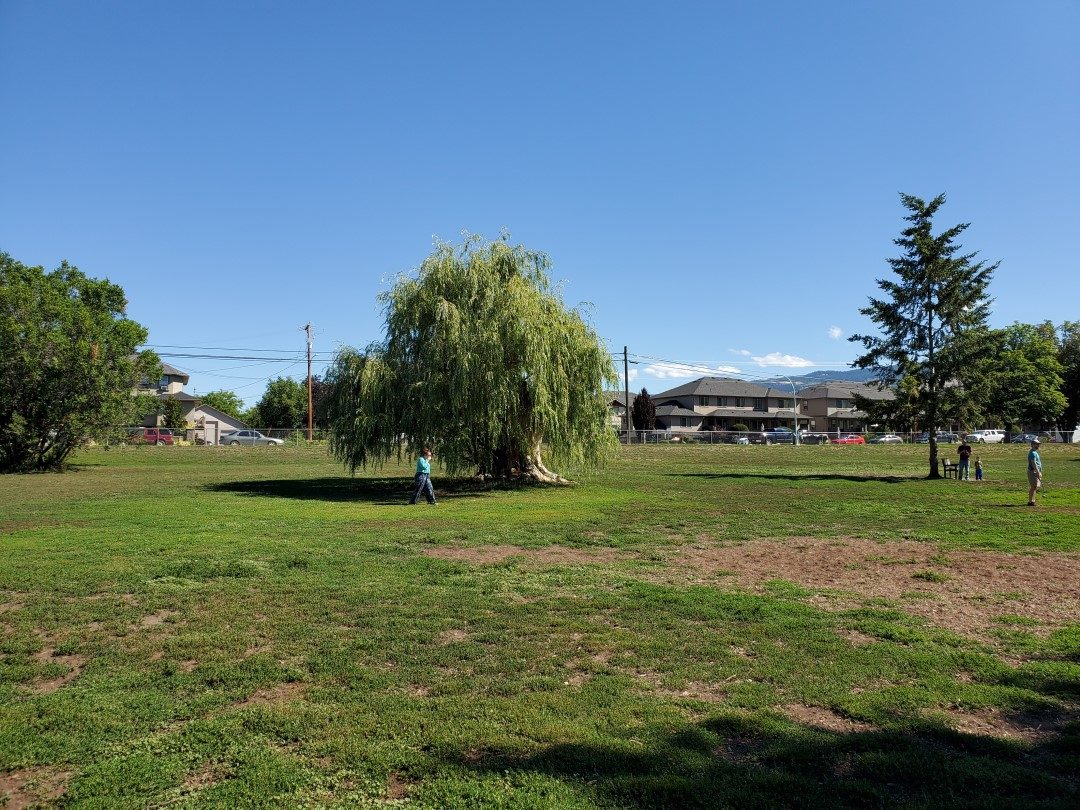 Rutland Reacreation Off-Leash Dog Park, Kelowna, BC