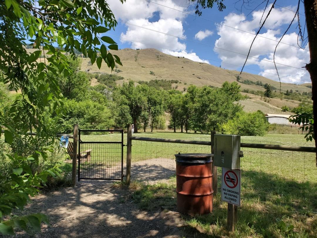 Vi Morphet Off-Leash Dog Park - Coldstream - BC (1)