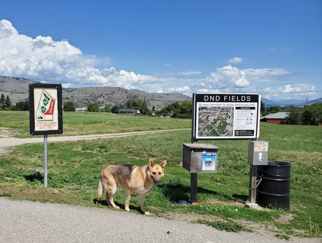 DND Grounds Off-Leash Dog Park, Vernon, BC
