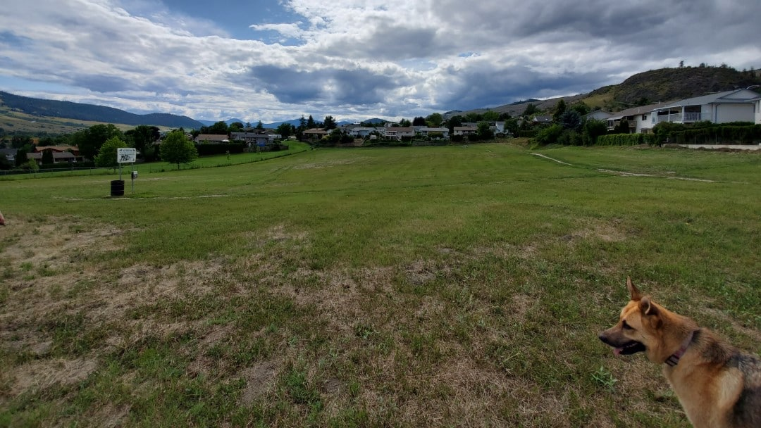 Heritage Park Off-Leash Dog Park – Vernon – BC (4)