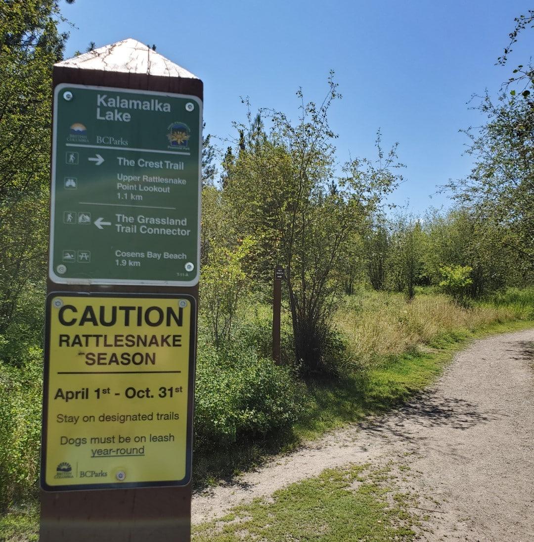 Kalamalka Lake Provincial Park Off-Leash Dog Park (Beach) – Vernon – BC (3)