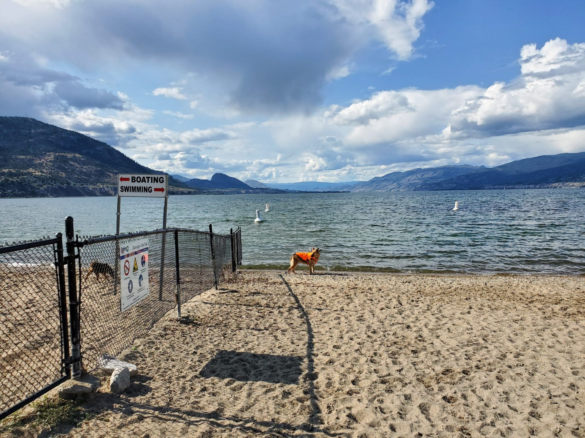 Okanagan Lake Off-Leash Dog Park, Penticton, BC